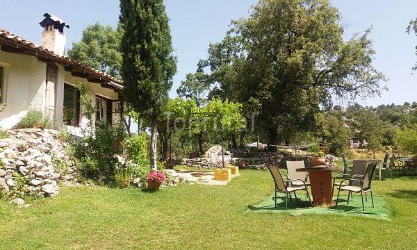 Casa Rural Las Castañetas - Zonas verdes